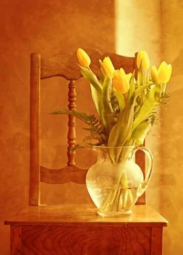 concerver fleurs vases